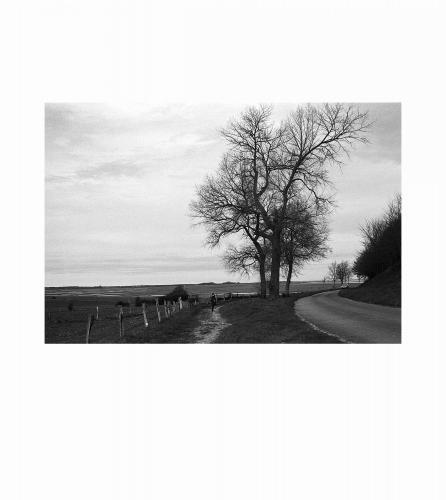 14 Baie de Somme, 2016