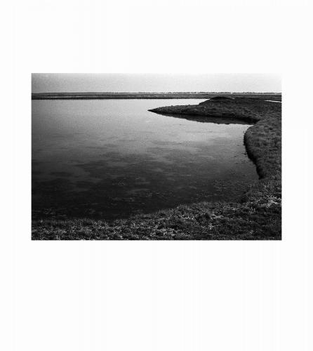 4 Baie de Somme, 2016