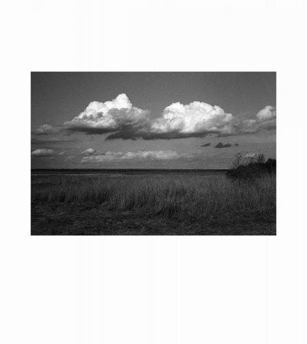 1 Baie de Somme, 2016
